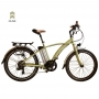 Juicy Electric Bikes Sport Lite 26